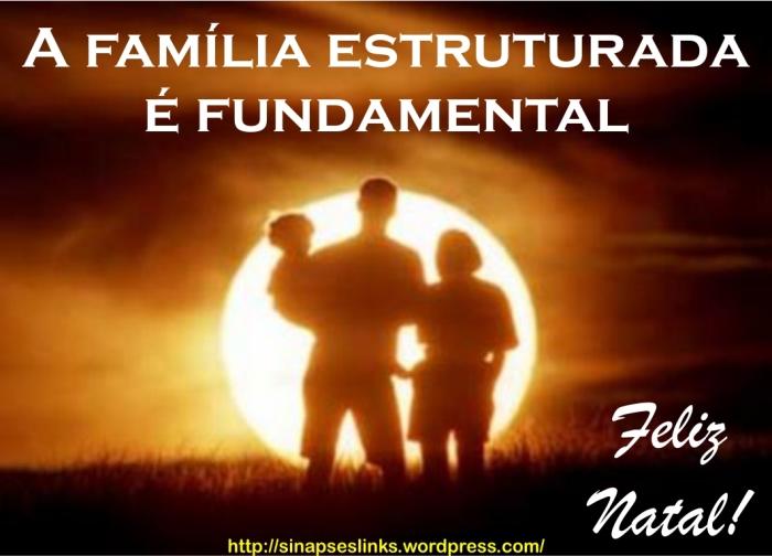 20121220_Família_estruturada