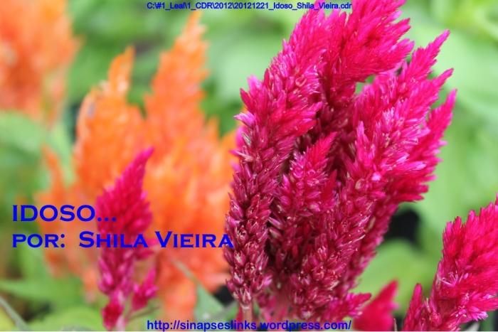 20121221_Idoso_Shila_Vieira