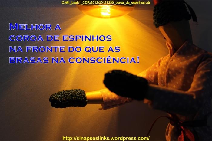 20121230_coroa_de_espinhos