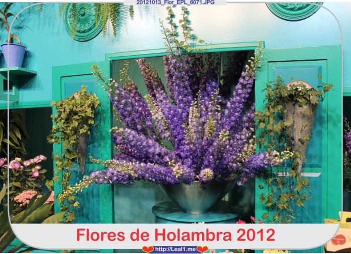 cIbV_20121013_Flor_EPL_6071