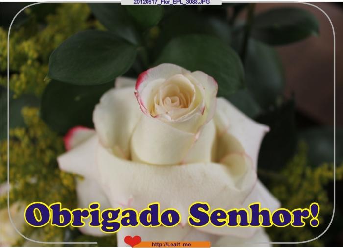 Cloi_20120617_Flor_EPL_3088