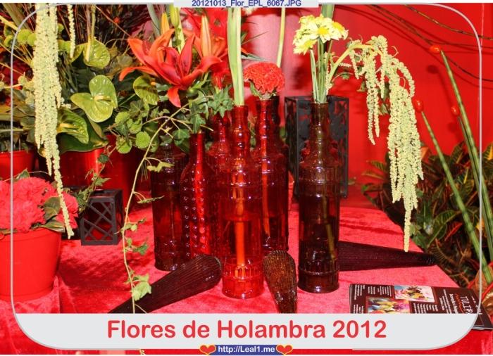 cOHl_20121013_Flor_EPL_6067