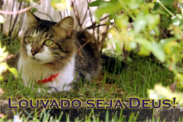 20130107_Louvado_seja_Deus