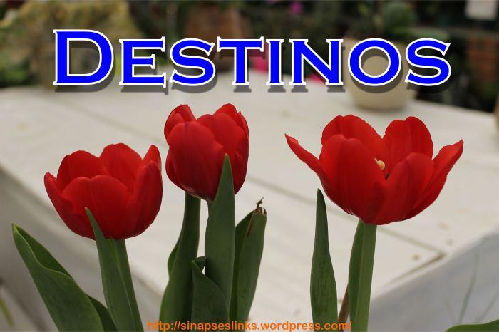 20130113_Destinos