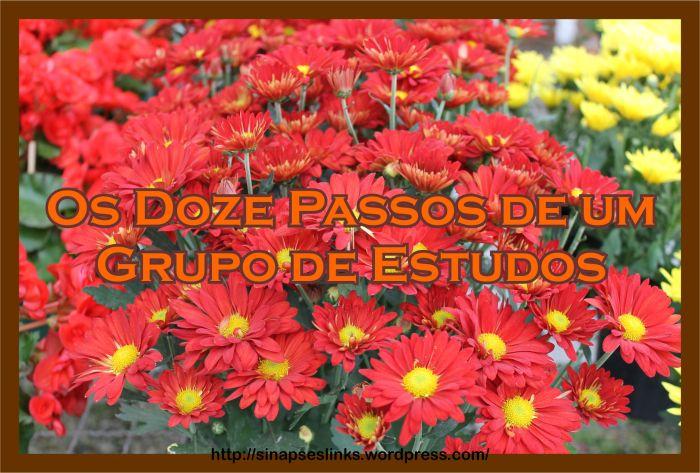 20130114_Doze_passos
