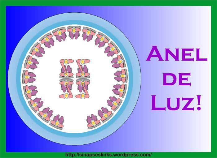 20130116_Anel_Luz