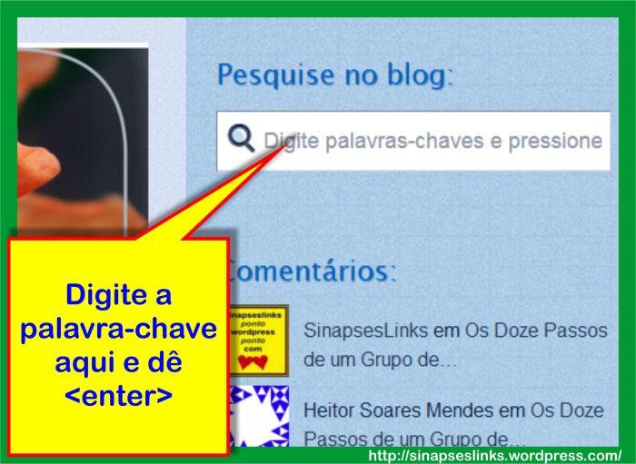 20130116_Pesquise_no_blog
