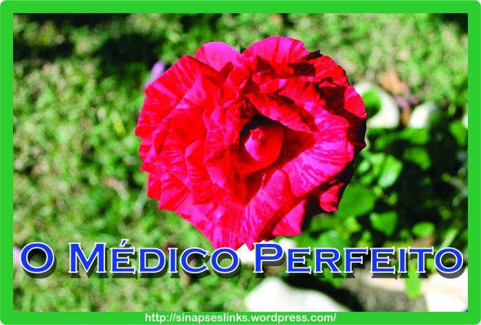 20130122_Médico_Perfeito