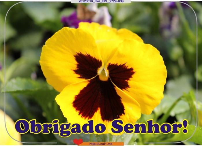 EKKI_20120616_Flor_EPL_2729