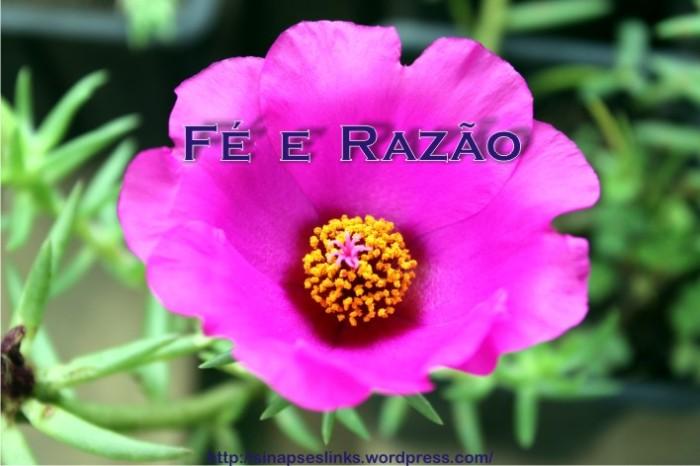 20130201_Fé_Razão.