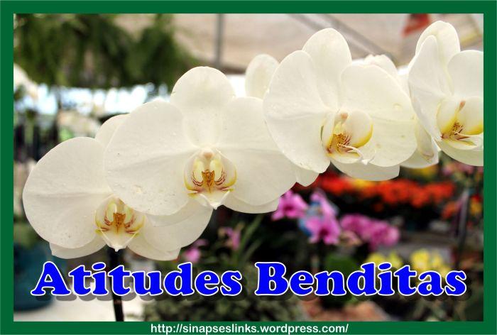 20130219_Atitudes_Benditas