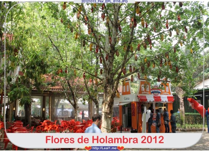 Ggcr_20121013_Flor_EPL_6116