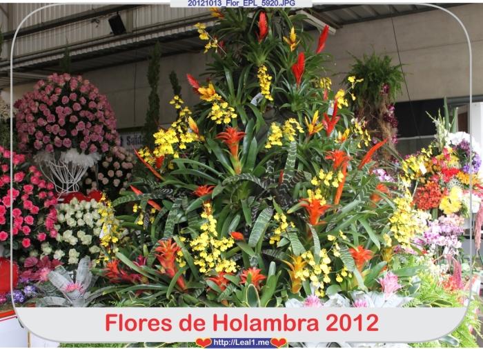 GStL_20121013_Flor_EPL_5920
