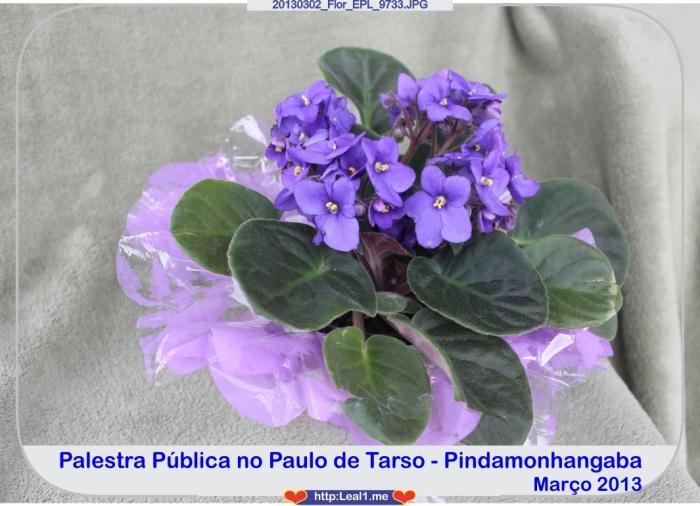 20130302_Flor_EPL_9733