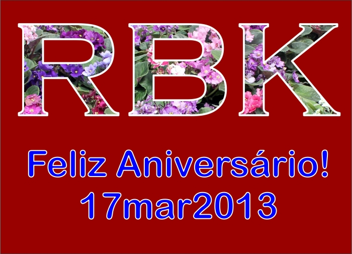 20130317_RBK