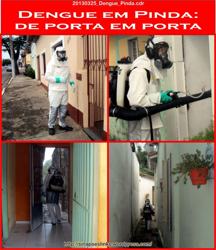 20130325_Dengue_Pinda