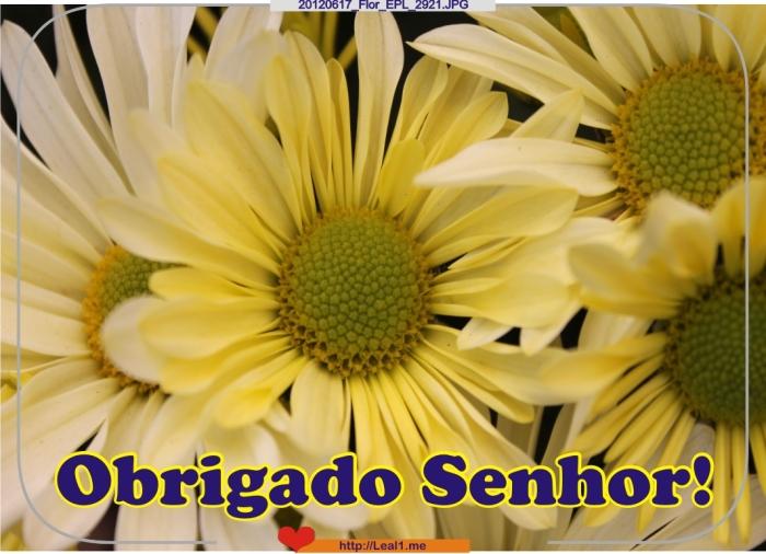 GvYP_20120617_Flor_EPL_2921