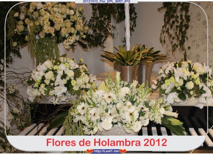 hwPv_20121013_Flor_EPL_6057