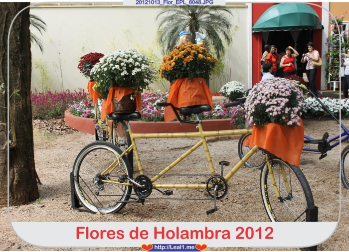 hXnO_20121013_Flor_EPL_6048