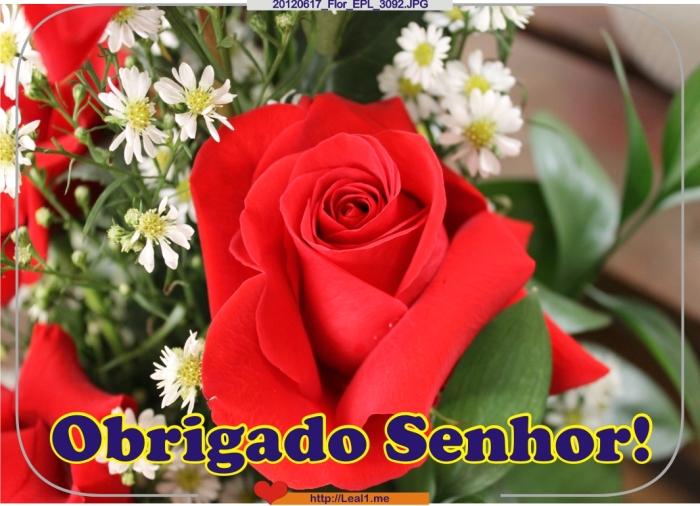 ibEp_20120617_Flor_EPL_3092