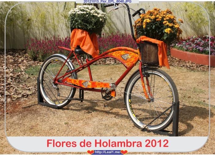 IsbP_20121013_Flor_EPL_6046