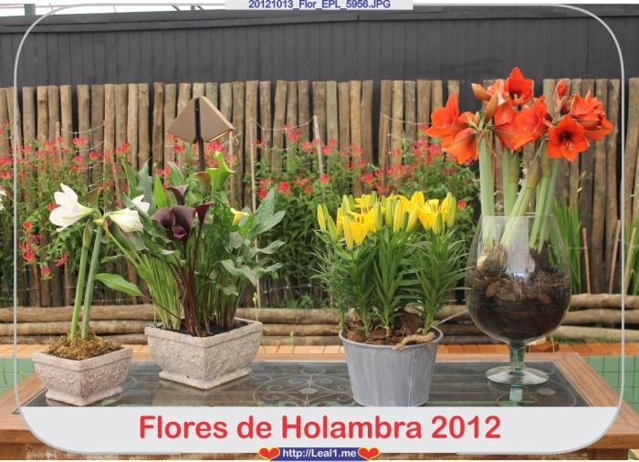 ISMv_20121013_Flor_EPL_5956