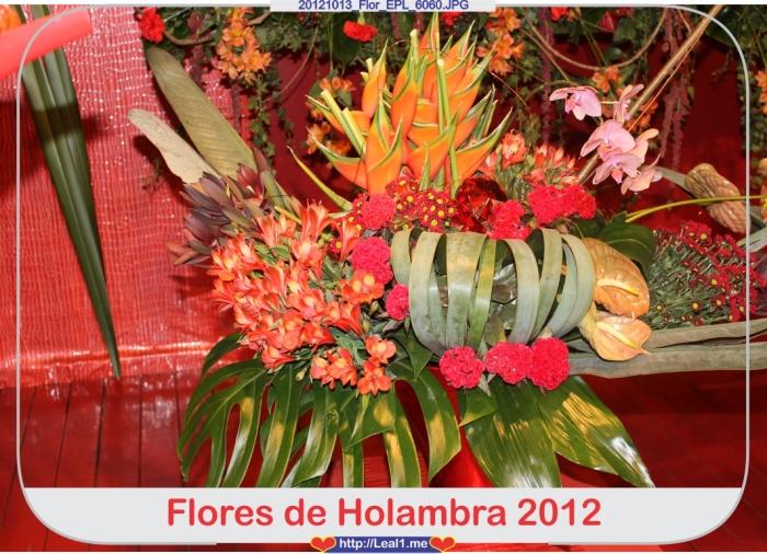 izqW_20121013_Flor_EPL_6060
