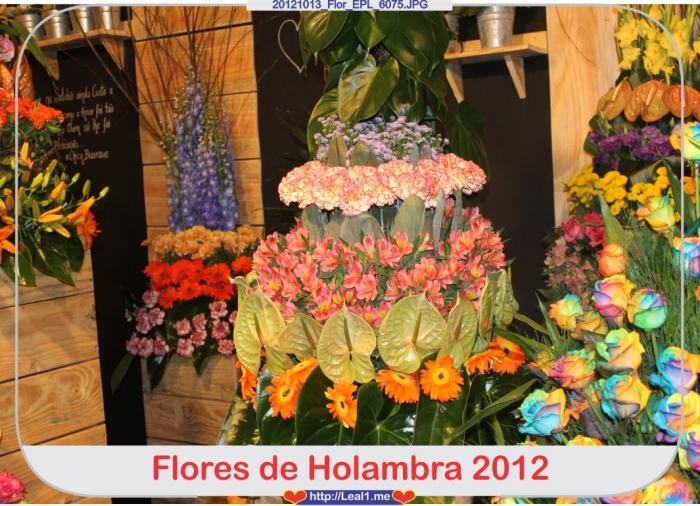 JBXx_20121013_Flor_EPL_6075