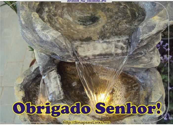 JhZC_20120225_Flor_DSC00250