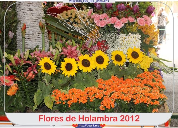 JQgd_20121013_Flor_EPL_6138