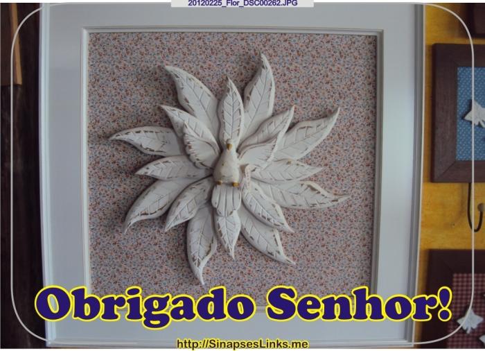kFNK_20120225_Flor_DSC00262