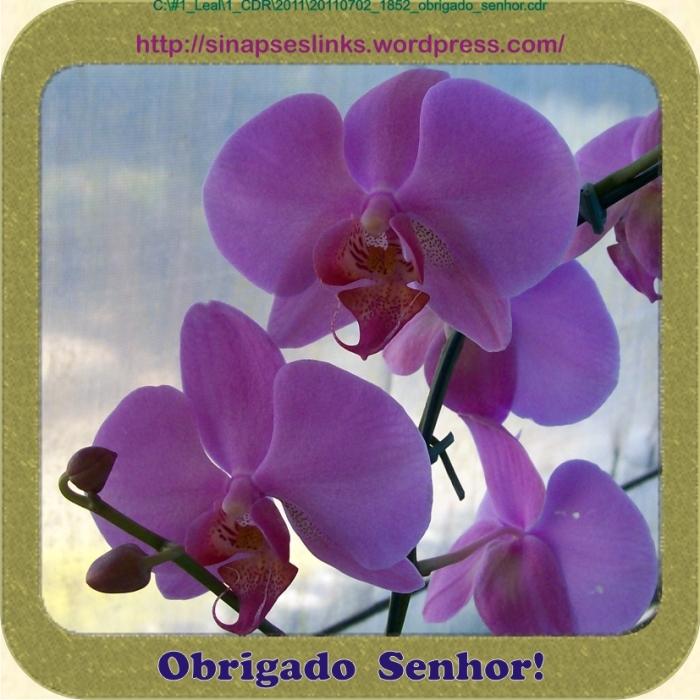 20110702_1852_obrigado_senhor