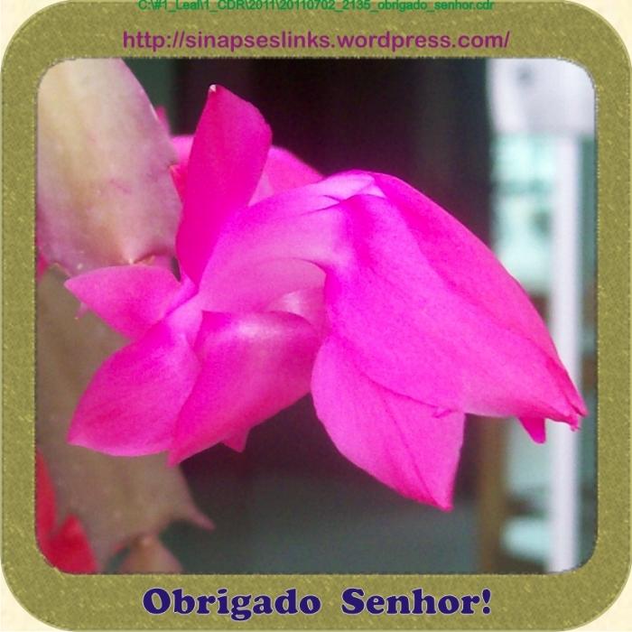 20110702_2135_obrigado_senhor