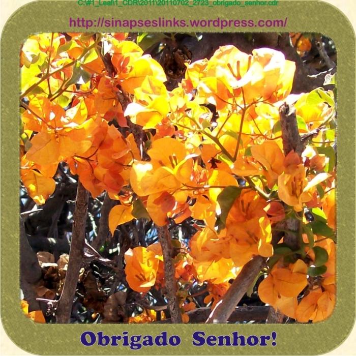 20110702_2723_obrigado_senhor