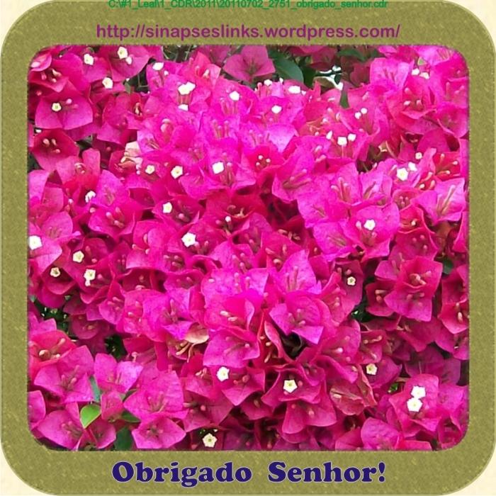 20110702_2751_obrigado_senhor