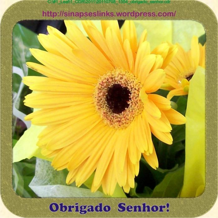 20110708_1354_obrigado_senhor