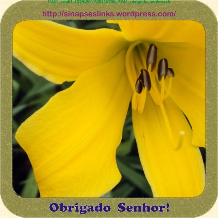 20110708_7241_obrigado_senhor