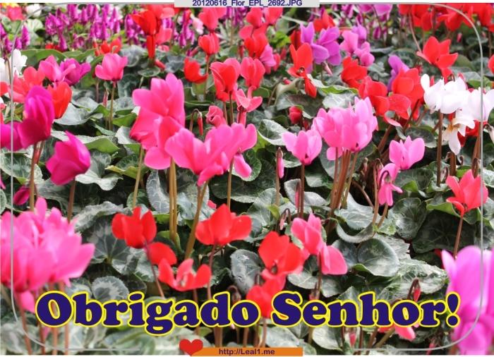 20120616_Flor_EPL_2692