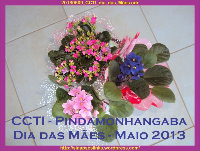 20130509_CCTI_dia_das_Mães
