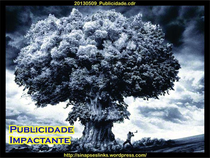 20130509_Publicidade
