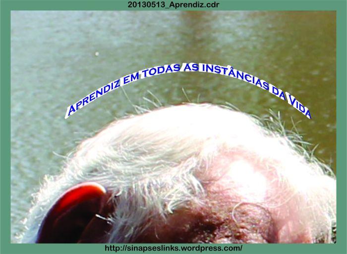 20130513_Aprendiz