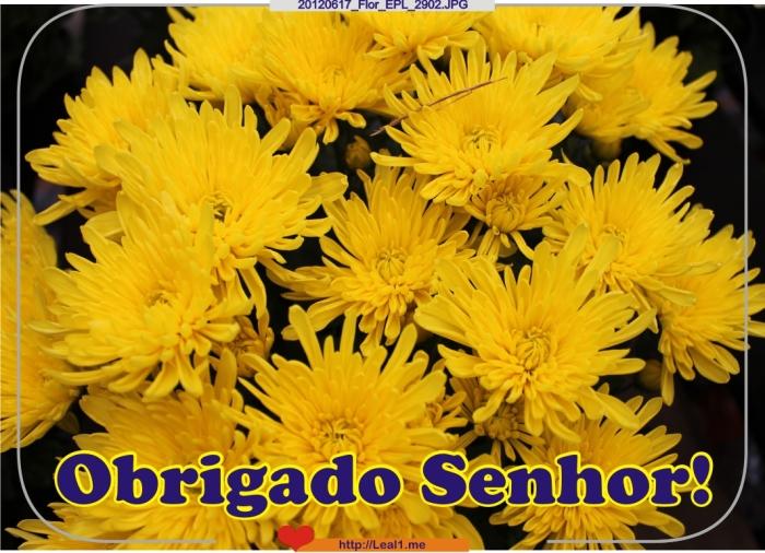 20120617_Flor_EPL_2902
