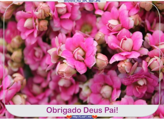 20121013_Flor_EPL_6841