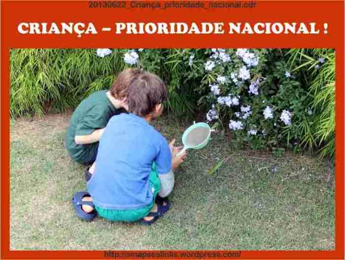 20130622_Criança_prioridade_nacional
