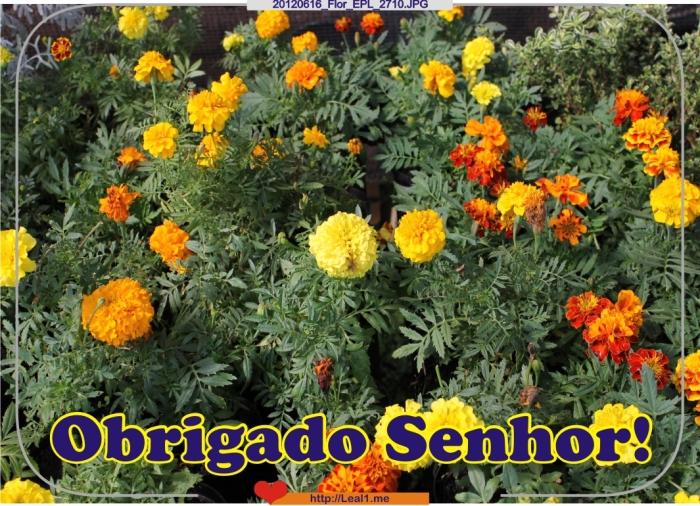 20120616_Flor_EPL_2710