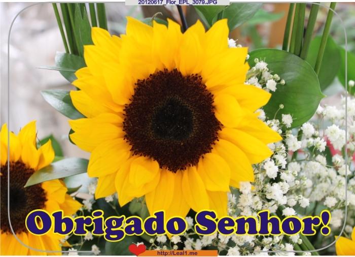 20120617_Flor_EPL_3079
