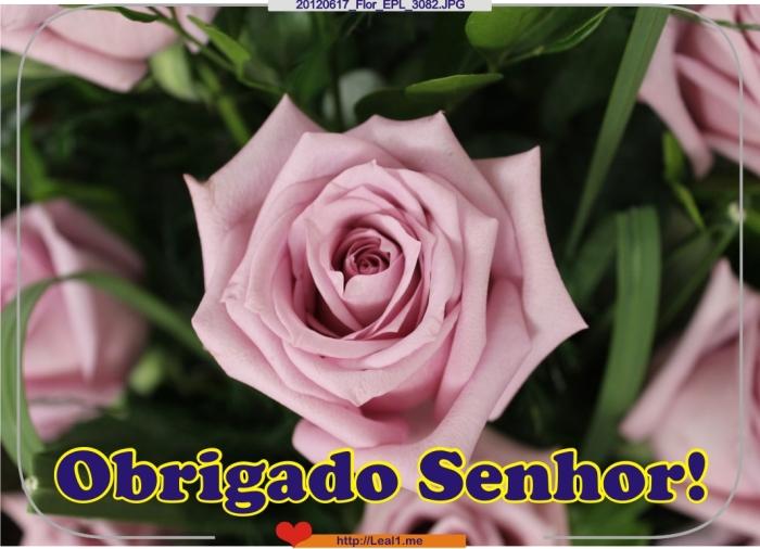 20120617_Flor_EPL_3082