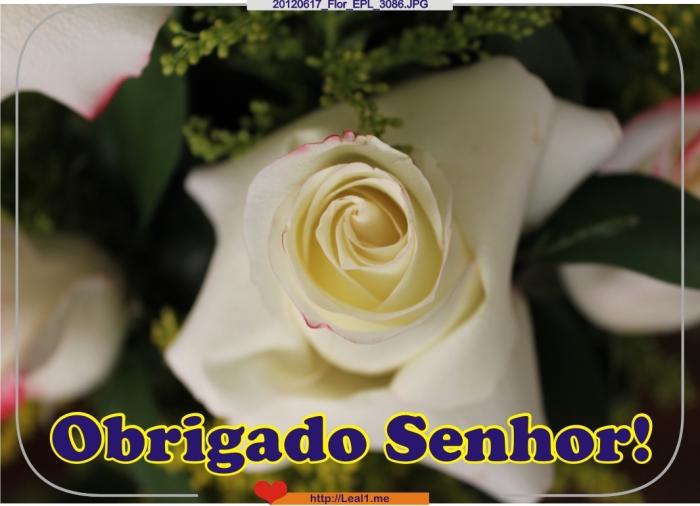 20120617_Flor_EPL_3086