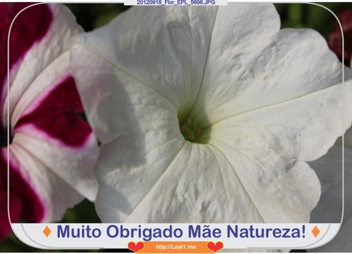 20120918_Flor_EPL_5698
