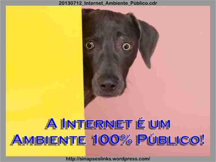 20130712_Internet_Ambiente_Público